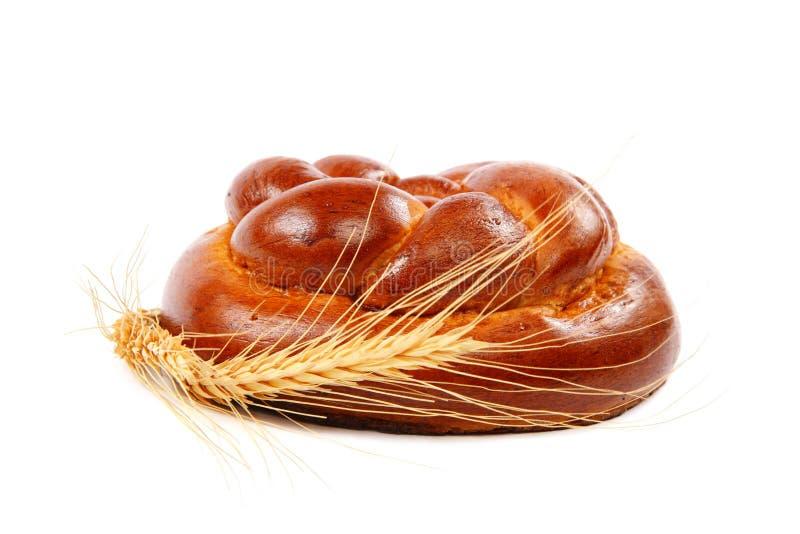 Pane a orelha do naco e do trigo em um fundo branco imagem de stock