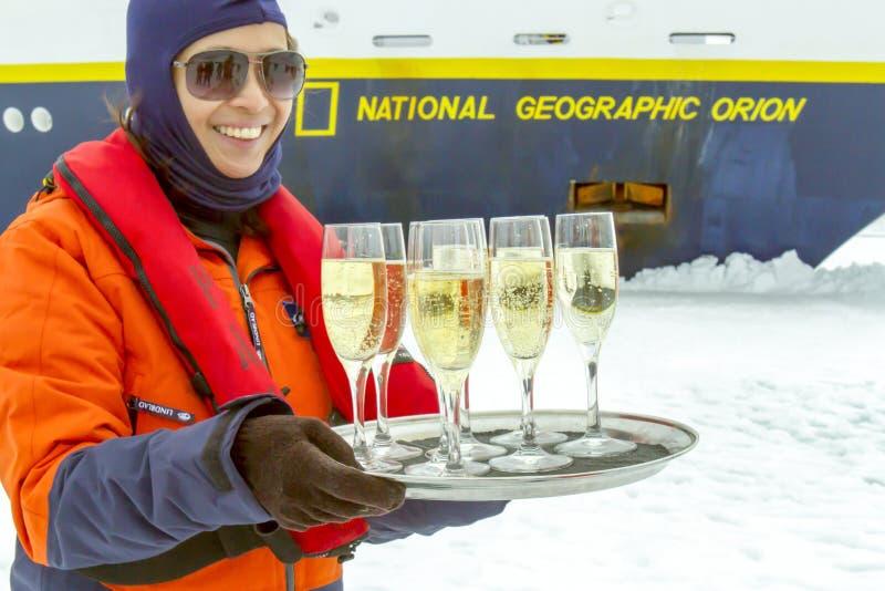 Pane tostato di Champagne, Antartide fotografia stock libera da diritti