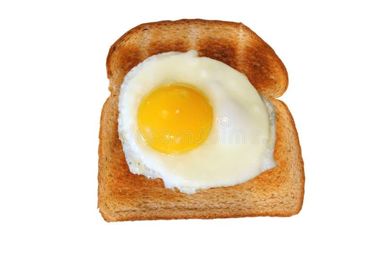 Pane tostato isolato con il lato pieno di sole dell'uovo in su immagini stock