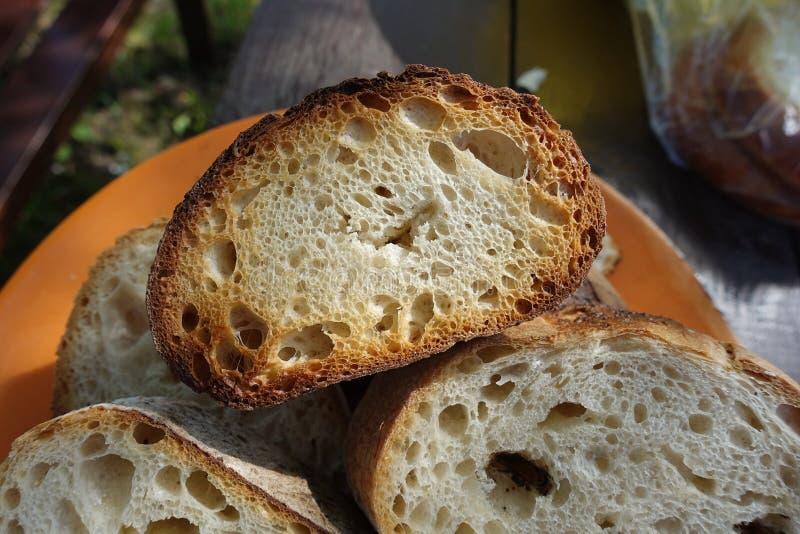 Pane tostato sul fuoco, cucinato sugli spiedi, illuminati dal sole fotografia stock libera da diritti