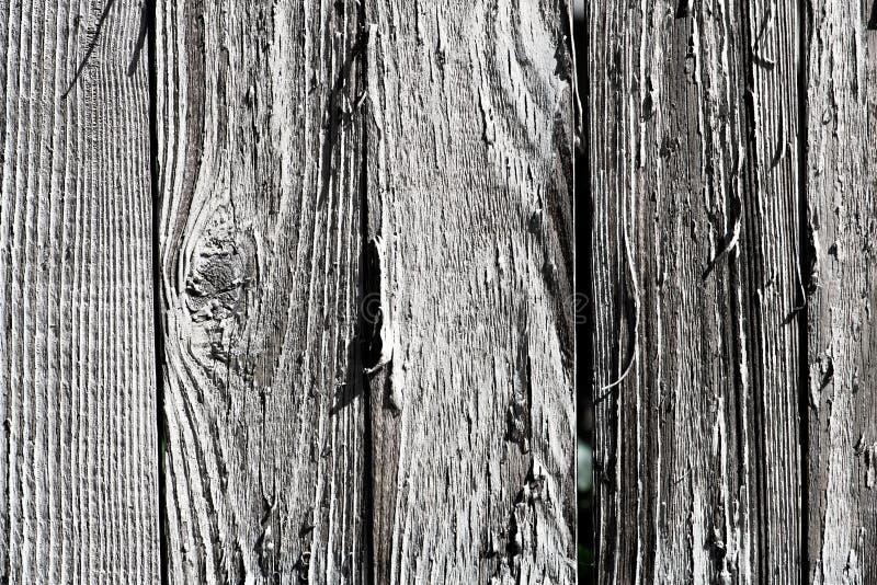 Panels on a weathered wood fence stock image