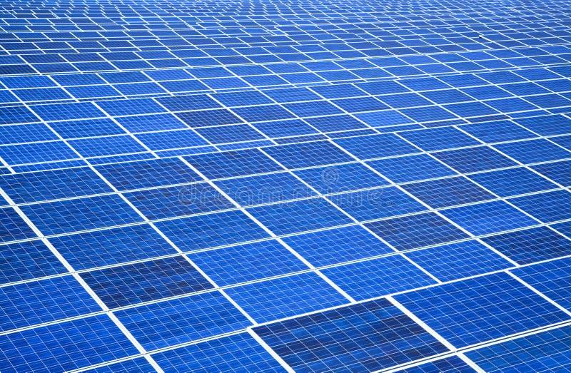 panelu rośliny władza słoneczna fotografia royalty free