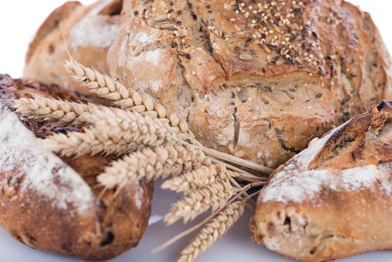 Panes frescos del cereal foto de archivo