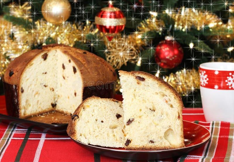 Panettone и рождественская елка стоковые фото