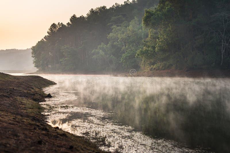 Pang Ung Forestry Plantations, Maehongson, ao norte de Tailândia fotografia de stock