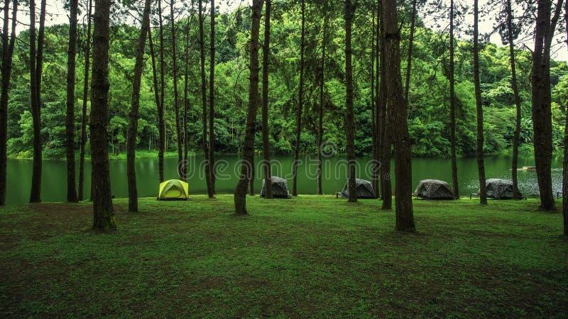Pang Ung vila ställe med ett tält arkivbilder
