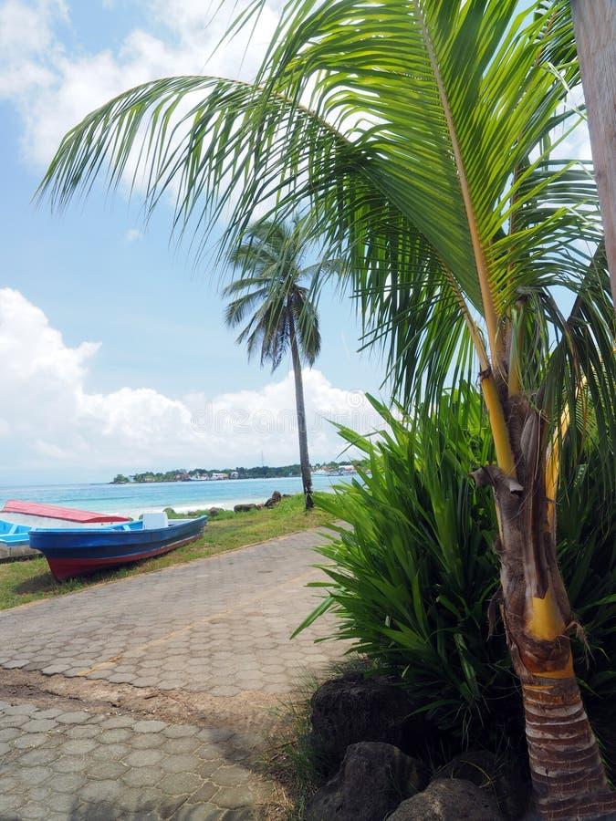 Panga fishing speed boats roadside with capital Brig Bay Big Cor. N Island in background Nicaragua royalty free stock photography