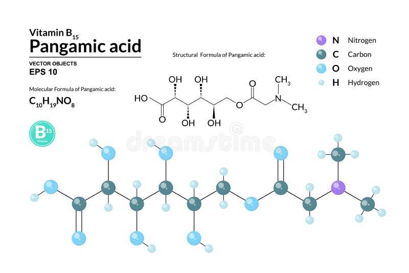 Pangamic酸结构化工分子式和模型  原子代表作为球形用颜色编码 向量例证