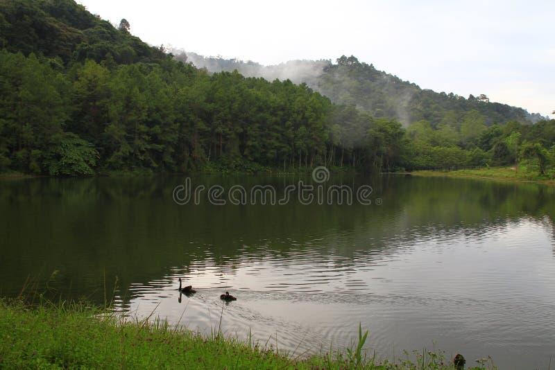 PangAung северный Таиланд Lakeview стоковая фотография
