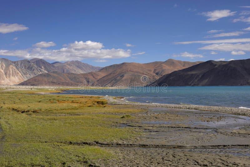Pangong湖,查谟-克什米尔邦,印度 班公错或高草原湖从印度延长对中国 免版税库存照片