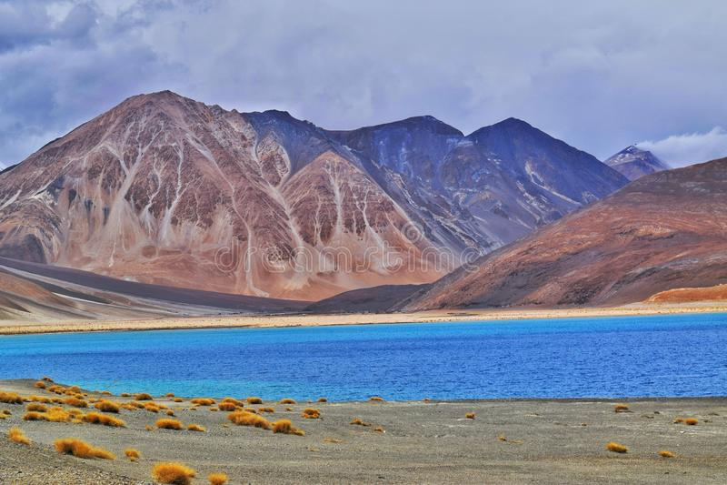 Pangong lake in ladakh stock photos