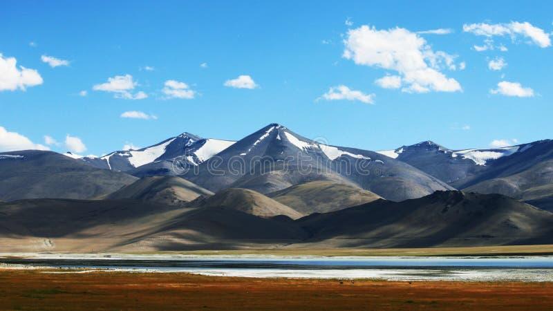 Pangong Tso, Tibetano para lago de prados elevados, também conhecido como lago de Pangong, é um lago endossado no Himalaia, situa fotografia de stock royalty free