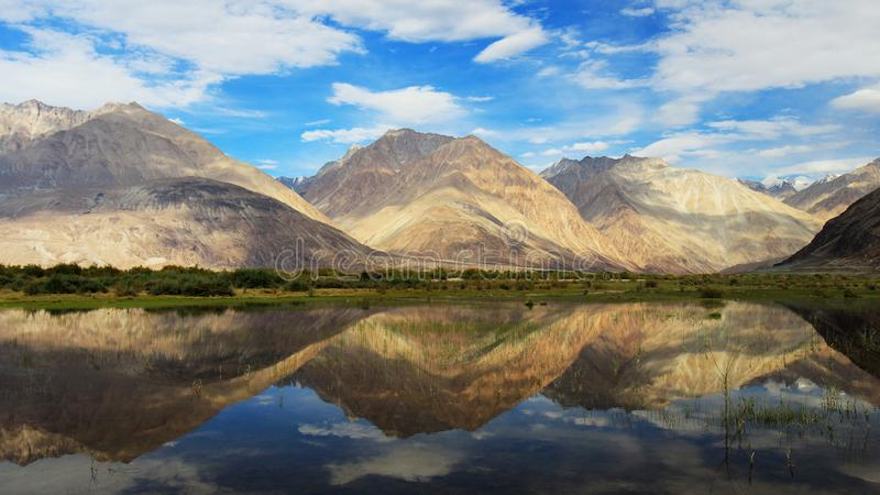 Pangong Tso, Tibetano para fotos de stock royalty free
