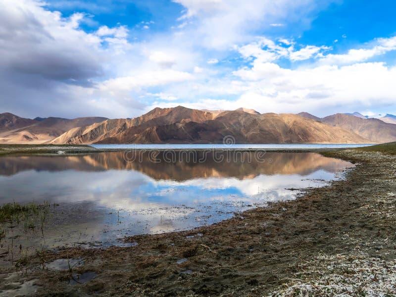 Pangongmeer of Pangong Tso met bergenbezinning, Ladakh, I stock afbeelding
