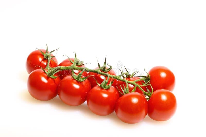 Panicle avec des tomates image stock