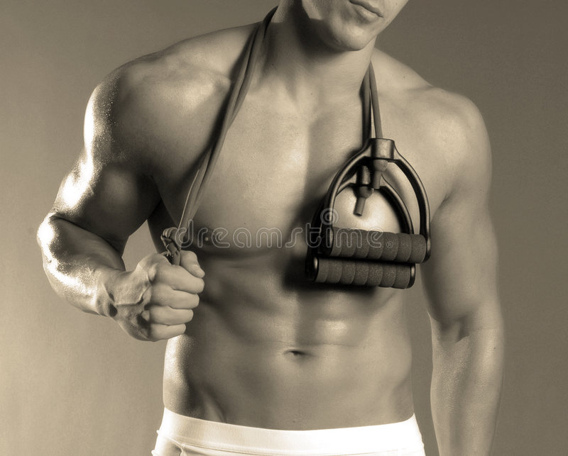 panie fizyczny fitness obrazy stock