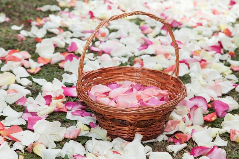 Panier avec des pétales de rose dans un chemin des pétales de rose images stock