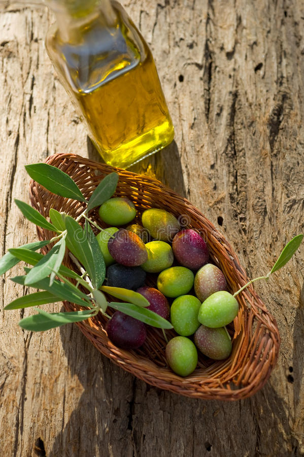 Panier avec la branche d'olivier photos libres de droits
