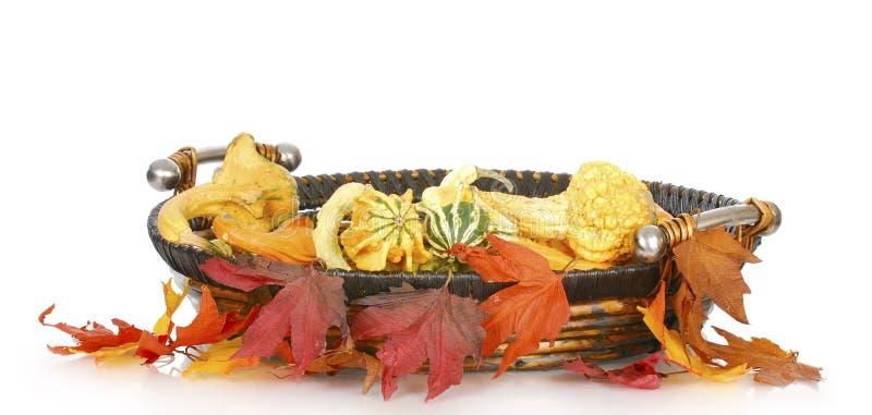 Panier d'automne images libres de droits