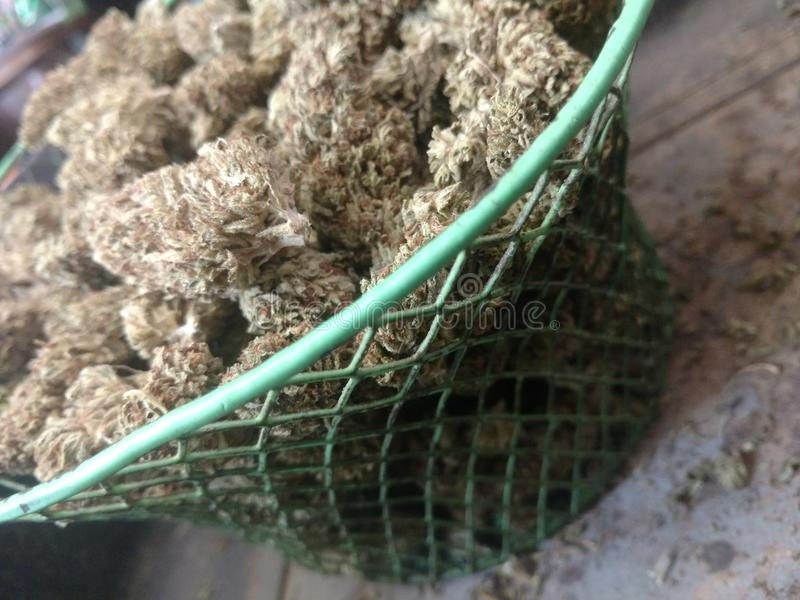 Panier de cannabis photos stock