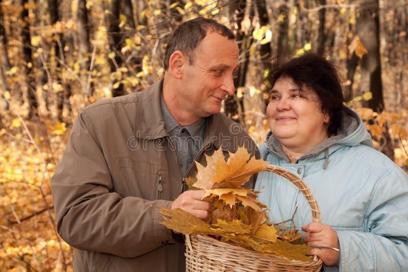 Panier de prise de vieil homme et de dame âgée des lames d'érable photo stock