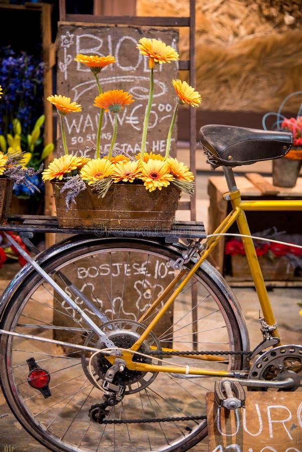 Panier de vélo avec la fleur photo libre de droits