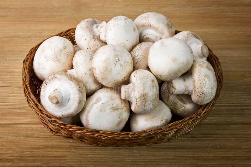 Panier des champignons de couche photo libre de droits