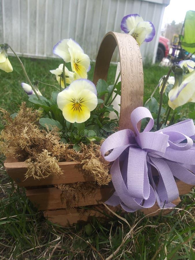 Panier des fleurs de floraison pour le mother& x27 ; jour de s photographie stock libre de droits