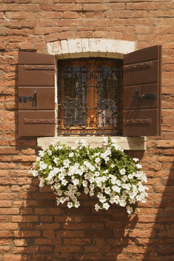 Panier des fleurs pendant de l'hublot. images libres de droits