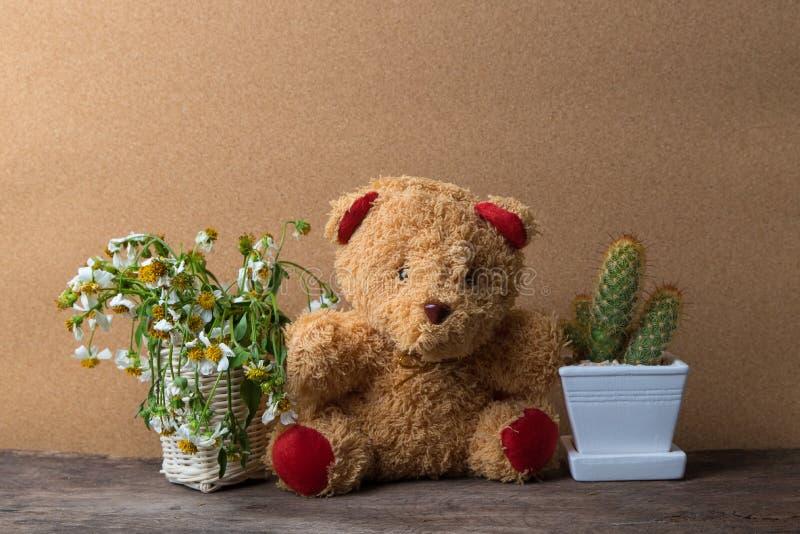 Panier des fleurs sèches et un ours de nounours avec des pots de cactus sur la table en bois avec le vieux brun image stock
