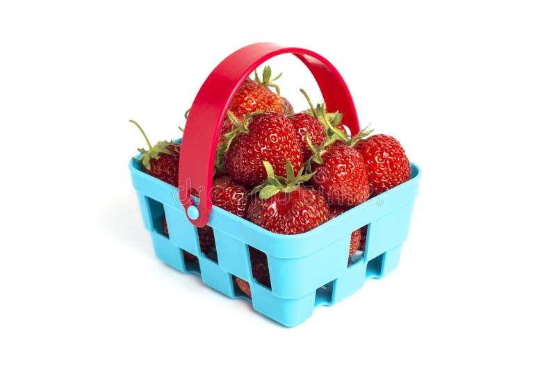 Panier des fraises fraîches mûres d'isolement sur le fond blanc Fraises m?res fra?ches dans le panier bleu Concept sain photo stock