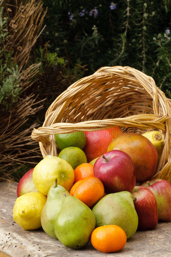 Panier des fruits photographie stock libre de droits
