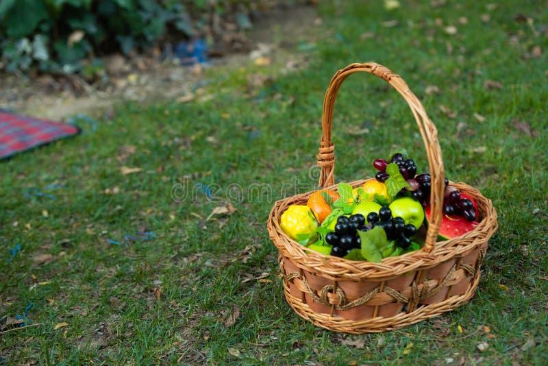 Panier des fruits dans le jardin photo stock