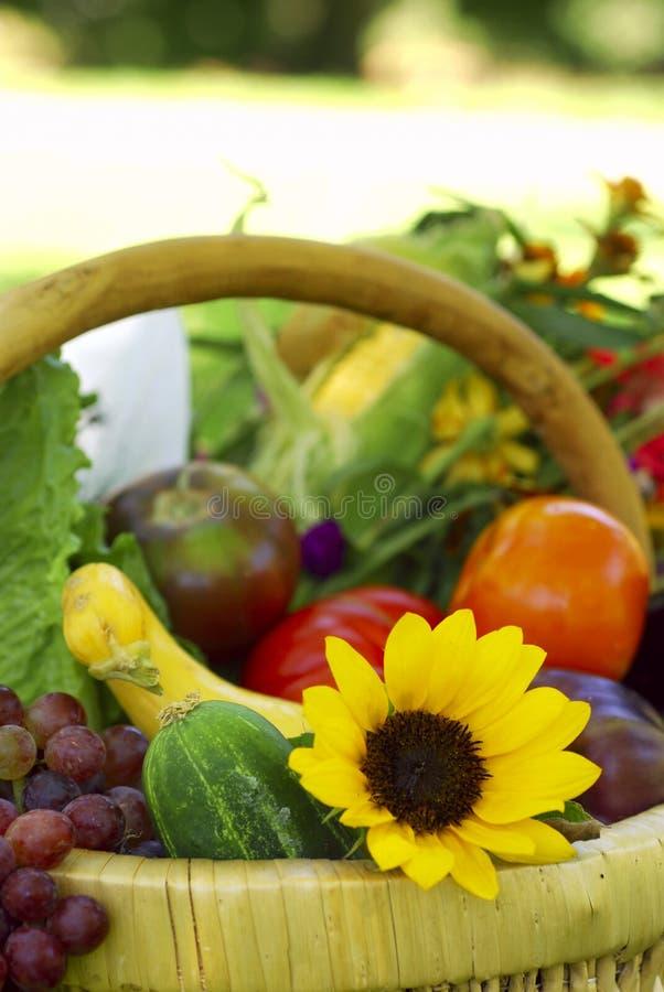 Panier des légumes de jardin photo libre de droits
