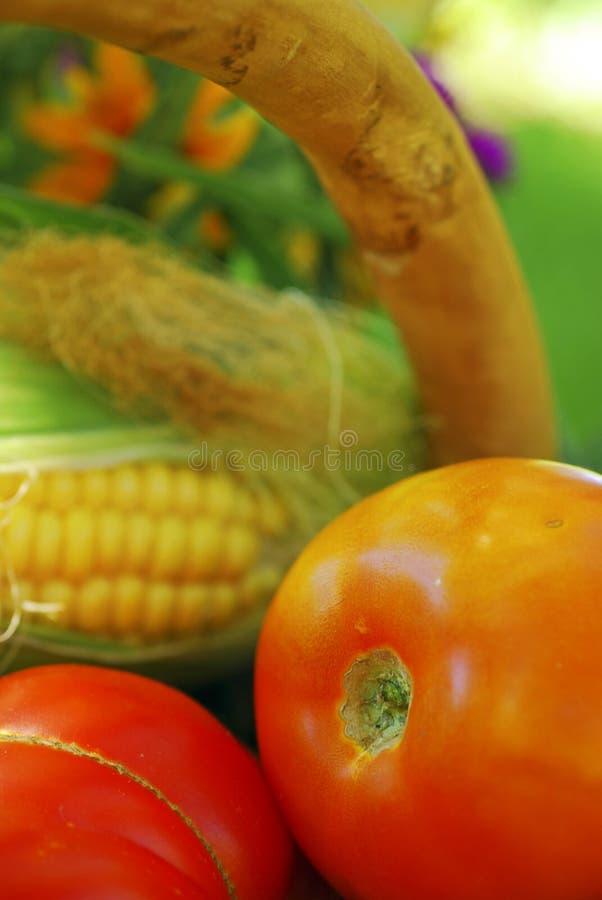 Panier des légumes de jardin image stock
