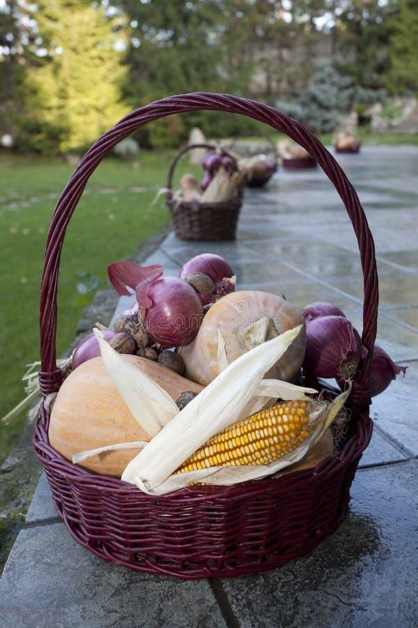 Panier en osier avec du maïs, les écrous, le potiron et l'oignon photos libres de droits