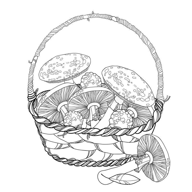Panier en osier avec le champignon d'agaric d'amanite ou de mouche d'isolement sur le blanc Champignon toxique de rouge-tasse d'e illustration libre de droits