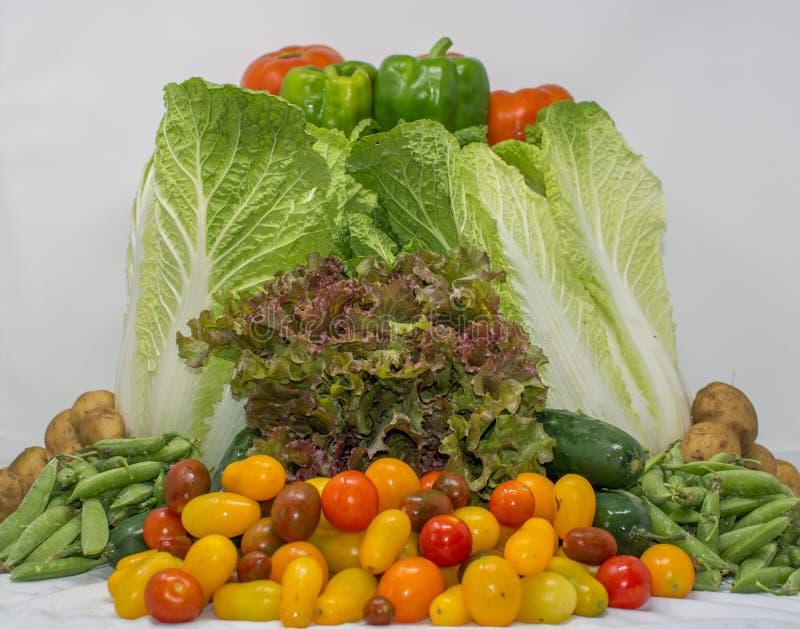 Panier organique de Veggies d'agriculteur de famille image stock