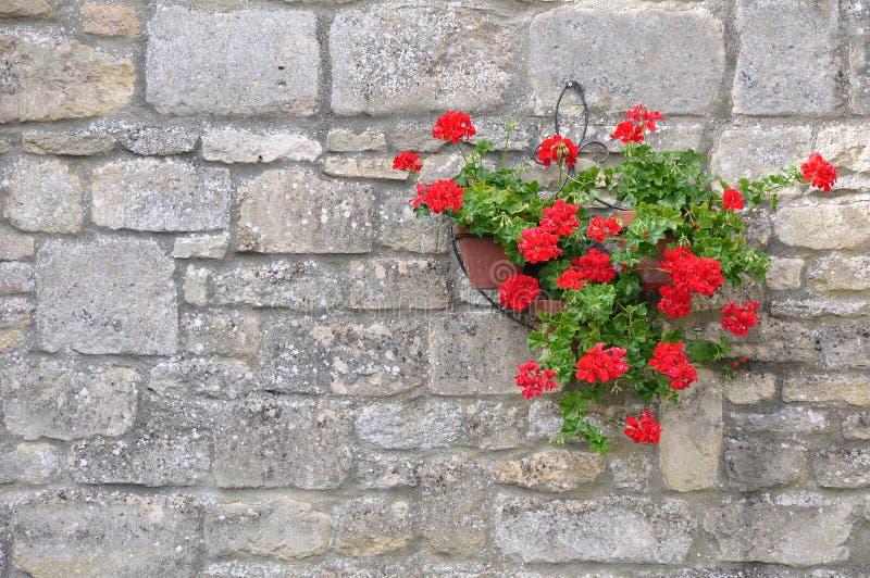 Panier s'arrêtant de fleur photo libre de droits
