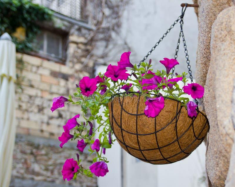 Panier s'arrêtant de fleurs photo libre de droits