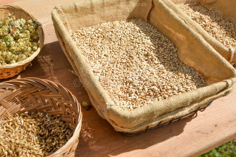Paniers des houblon et de l'orge pour la bière de brassage images stock