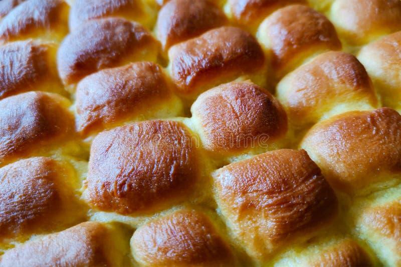 Panini al forno fatti lievitare ducato dorato fotografia stock