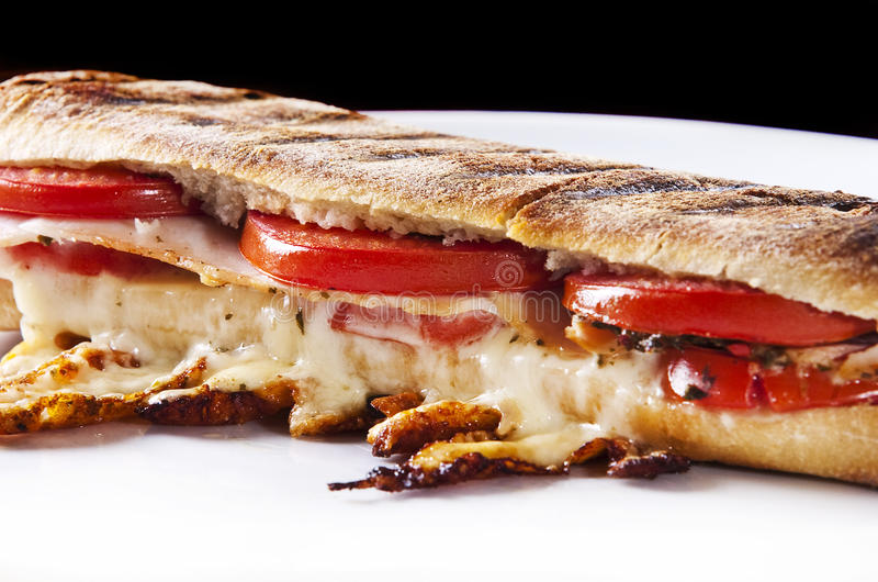 Panini sandwich stock photography