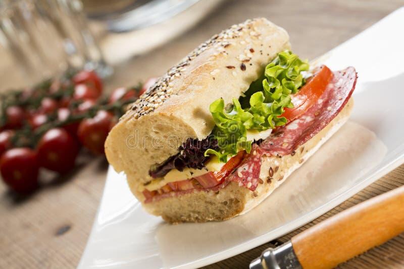 Panini Sandwich lizenzfreies stockbild