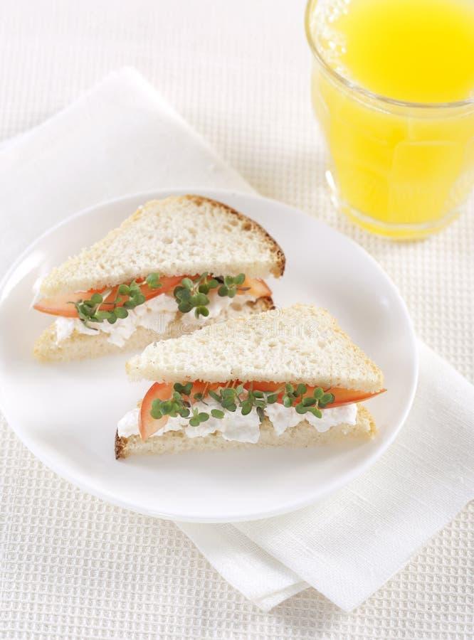 Panini vegetariani fotografie stock