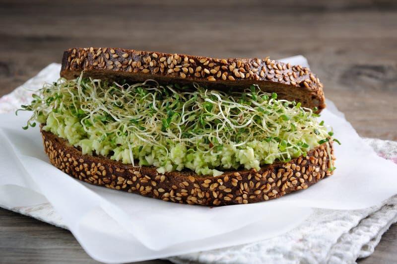Panino con i germogli di alfalfa e dell'avocado fotografia stock libera da diritti