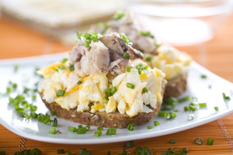 Panino con le uova e lo scombro rimescolati immagine stock libera da diritti