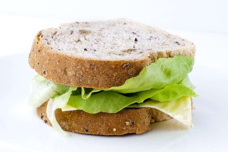 Panino del formaggio di Vege immagine stock libera da diritti