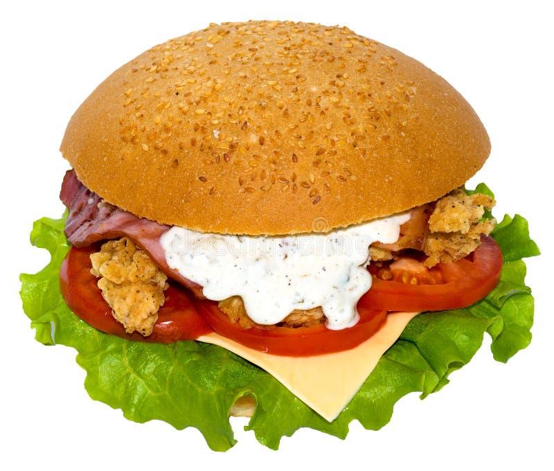Panino di prosciutto e del pollo fotografia stock libera da diritti