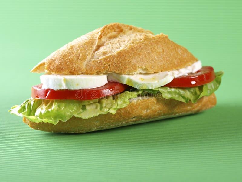 Panino di verdure. Bocadillo vegetale. immagini stock libere da diritti
